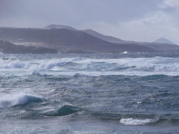 el océano - la cicer - ilijana hoene