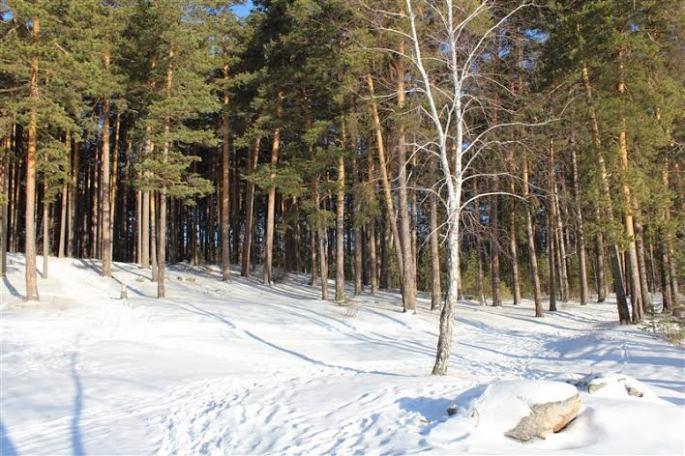 Montes Urales en Rusia -Katsyerina Sabaleuskaya